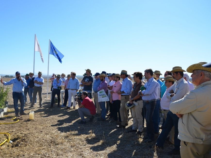 Field Day on Conservation Agriculture organized by ASAJA-Seville and the AEAC.SV within the framework of the Life + Climagri project